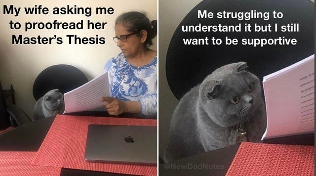 Cat - My wife asking me to proofread her Me struggling to understand it but I still want to be supportive Master's Thesis @NewDadNotes