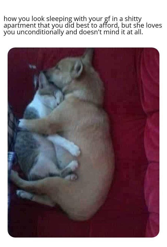 Photo caption - how you look sleeping with your gf in a shitty apartment that you did best to afford, but she loves you unconditionally and doesn't mind it at all.