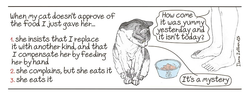 Text - when my cat doesn't approve of the food I just qave her. How COme it was yummy yesterday and it isn't today? 1. she insists that Ireplace it with another kind, and that I compensate herby feeding her by'hand 2. she complains, but she eats it 3. she eats it It's a mystery Ilana Zeffren
