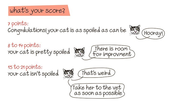 Text - what's your score? 7 points: Congrdulations! your cat is as spoiled as can be Hooray! 8 to 14 points: YOur cat is pretty spoiled There is rooM for improvment 15 to 21 points: YOur cat isn't spoiled That's weird Take her to the vet as soon as possible