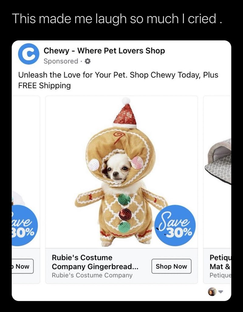 Text - This made me laugh so much I cried . C Chewy - Where Pet Lovers Shop Sponsored · 0 Unleash the Love for Your Pet. Shop Chewy Today, Plus FREE Shipping we 30% Save 30% Petiqu Mat & Petique Rubie's Costume þ Now Company Gingerbread... Rubie's Costume Company Shop Now