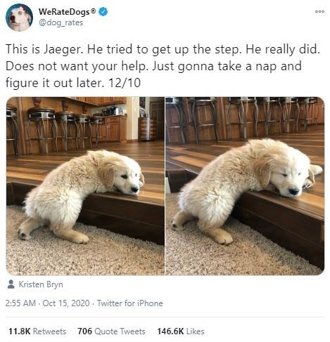 Adaptation - WeRateDogs® @dog_rates This is Jaeger. He tried to get up the step. He really did. Does not want your help. Just gonna take a nap and figure it out later. 12/10 Kristen Bryn 2:55 AM - Oct 15, 2020 - Twitter for iPhone 11.8K Retweets 706 Quote Tweets 146.6K Likes