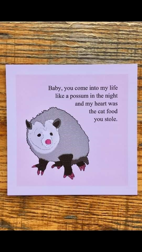 Possum - Baby, you come into my life like a possum in the night and my heart was the cat food you stole.