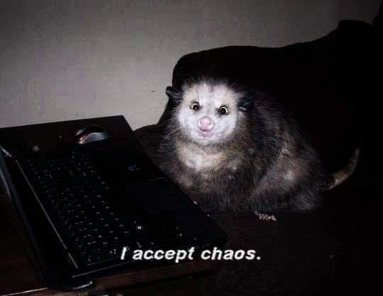 Vertebrate - I accept chaos.