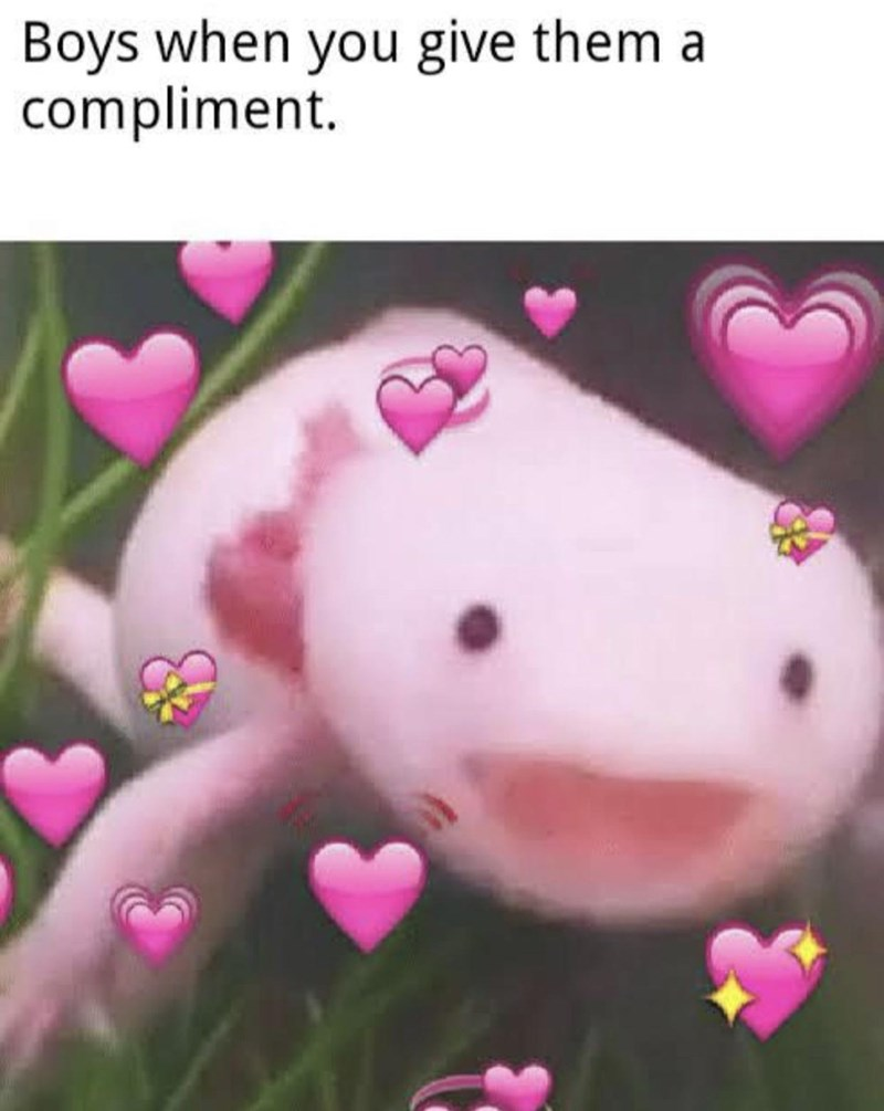 Pink - Boys when you give them a compliment.