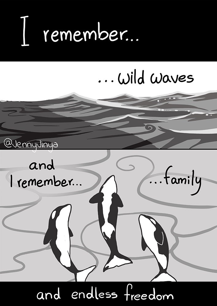 Text - | remember. ...wild waves @JennyJinya and I remember.. family and endless freedom