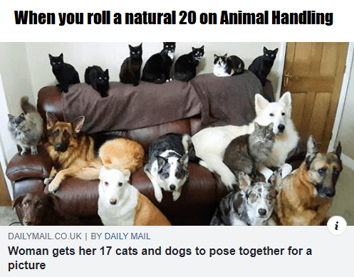Canidae - When you roll a natural 20 on Animal Handling DAILYMAIL.CO.UK   BY DAILY MAIL Woman gets her 17 cats and dogs to pose together for a picture