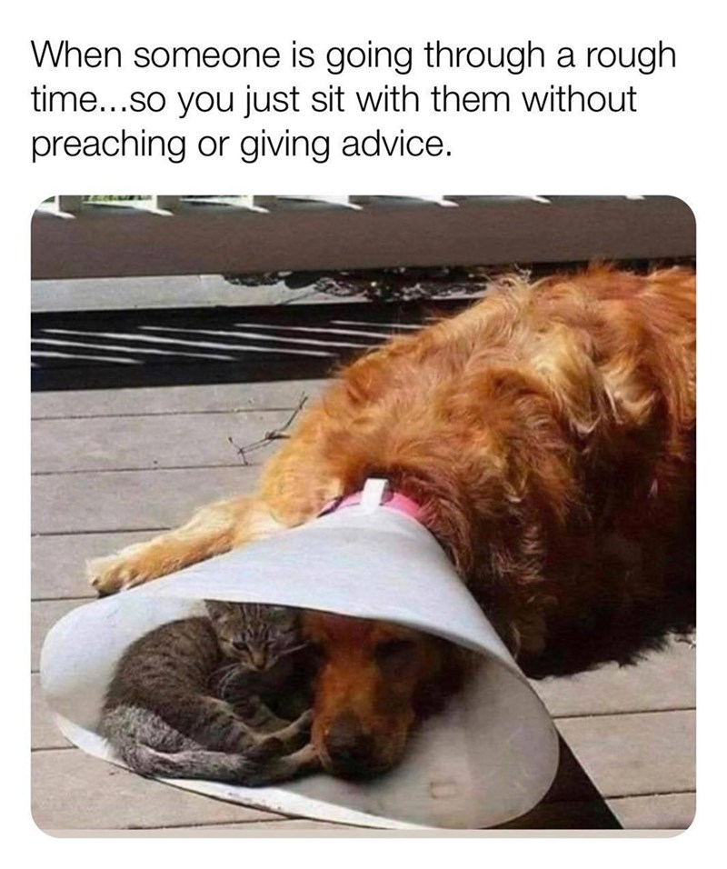 Dog - When someone is going through a rough time...so you just sit with them without preaching or giving advice.