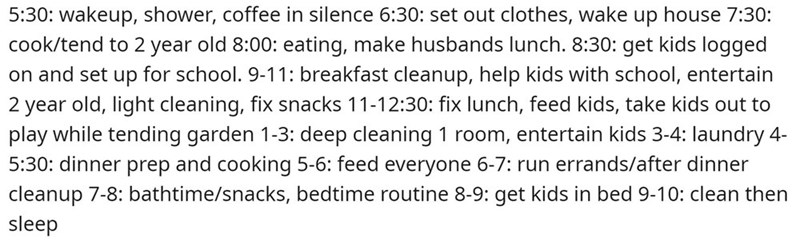 Text - 5:30: wakeup, shower, coffee in silence 6:30: set out clothes, wake up house 7:30: cook/tend to 2 year old 8:00: eating, make husbands lunch. 8:30: get kids logged on and set up for school. 9-11: breakfast cleanup, help kids with school, entertain 2 year old, light cleaning, fix snacks 11-12:30: fix lunch, feed kids, take kids out to play while tending garden 1-3: deep cleaning 1 room, entertain kids 3-4: laundry 4- 5:30: dinner prep and cooking 5-6: feed everyone 6-7: run errands/after d