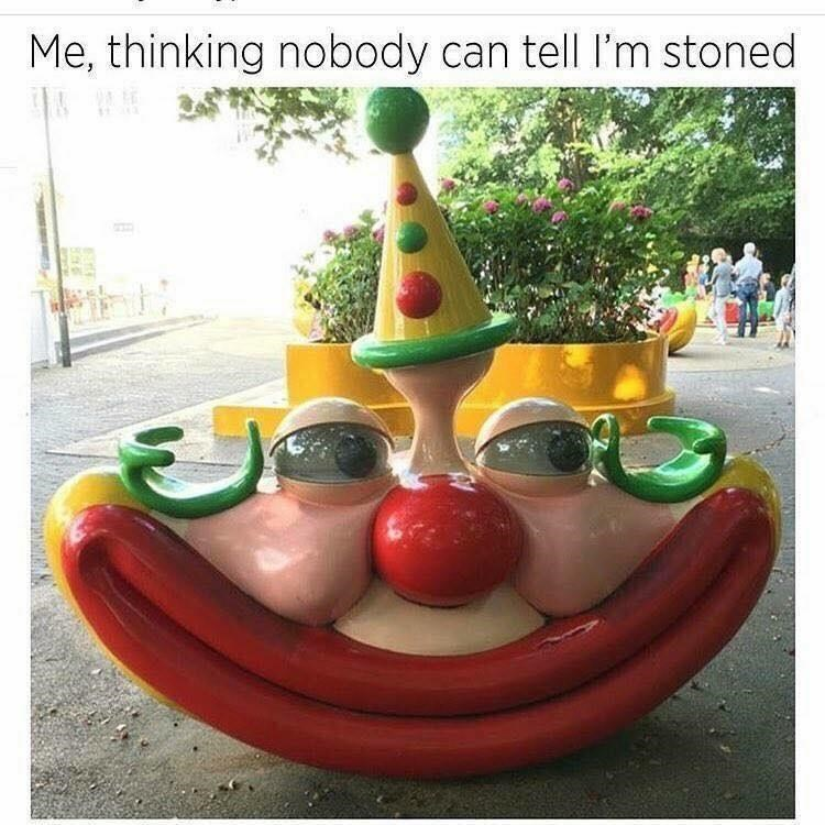 Fun - Me, thinking nobody can tell l'm stoned