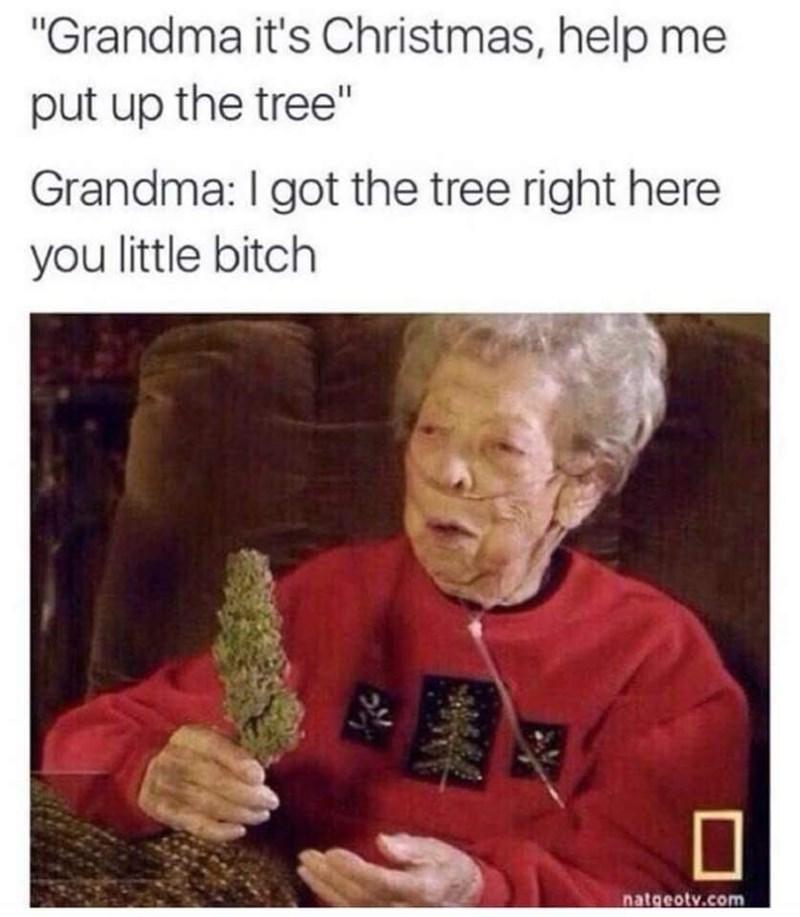 "Text - ""Grandma it's Christmas, help me put up the tree"" Grandma: I got the tree right here you little bitch natgeotv.com"