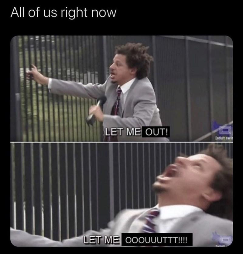2020 funny memes 2020 memes lol funny - 9572523776