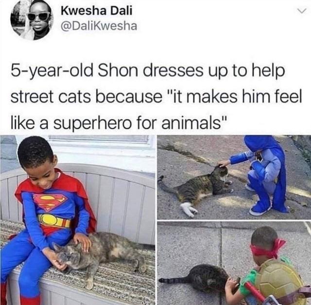 "Human - Kwesha Dali @Dalikwesha 5-year-old Shon dresses up to help street cats because ""it makes him feel like a superhero for animals"""
