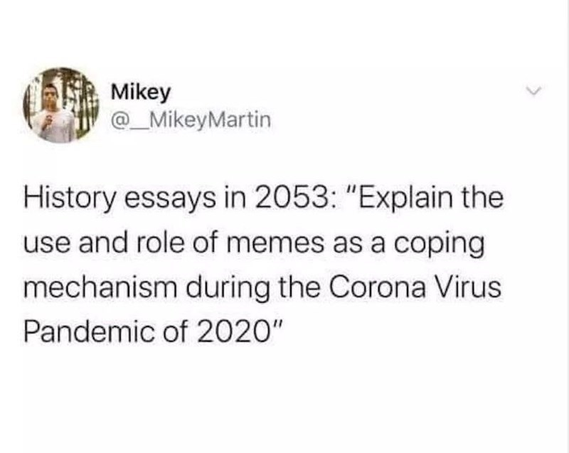 "Text - Mikey @_MikeyMartin History essays in 2053: ""Explain the use and role of memes as a coping mechanism during the Corona Virus Pandemic of 2020"""