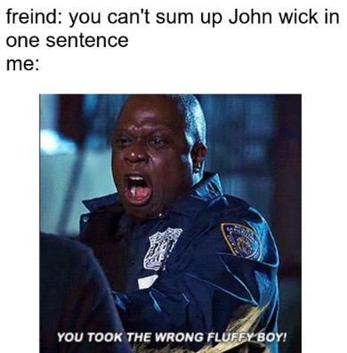 Text - freind: you can't sum up John wick in one sentence me: YOU TOOK THE WRONG FLUFFY BOY!
