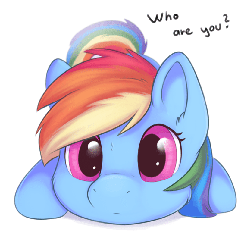 breaking the fourth wall rainbow dash dbleki - 9572743168
