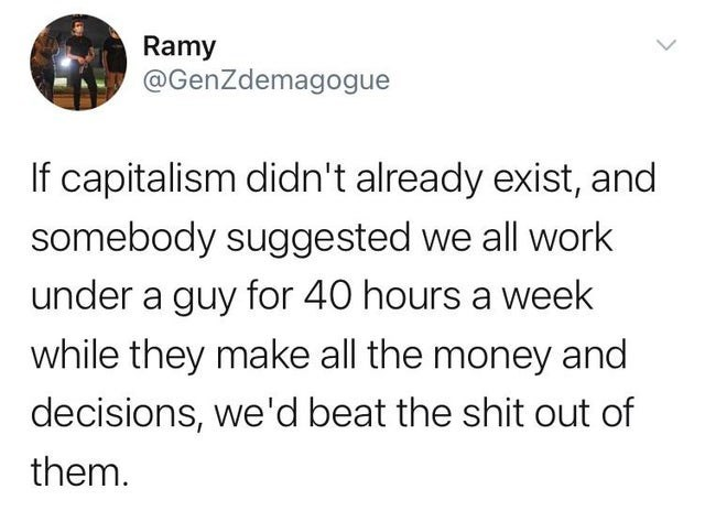 Text - Ramy @GenZdemagogue If capitalism didn't already exist, and somebody suggested we all work under a guy for 40 hours a week while they make all the money and decisions, we'd beat the shit out of them.