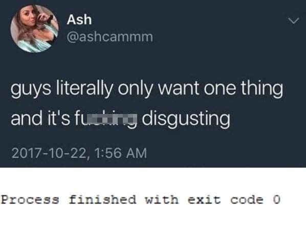 Text - Ash @ashcammm guys literally only want one thing and it's futking disgusting 2017-10-22, 1:56 AM Process finished with exit code 0