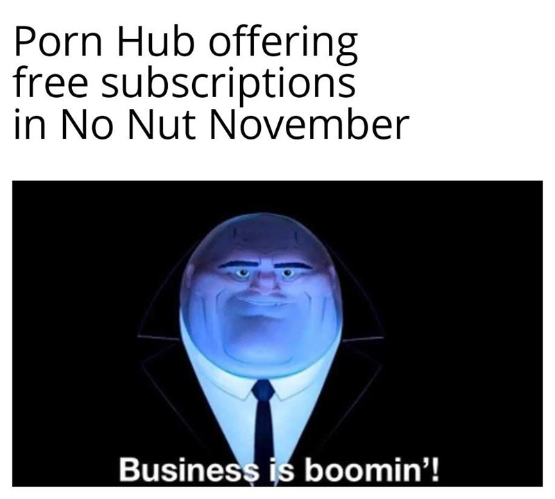 Text - Porn Hub offering free subscriptions in No Nut November Business is boomin'!