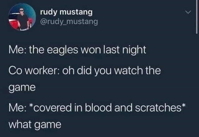 Funny twitter meme, tweet that says the eagles won, what game? | rudy mustang @rudy_mustang Me: the eagles won last night Co worker: oh did you watch the game Me: *covered in blood and scratches* what game