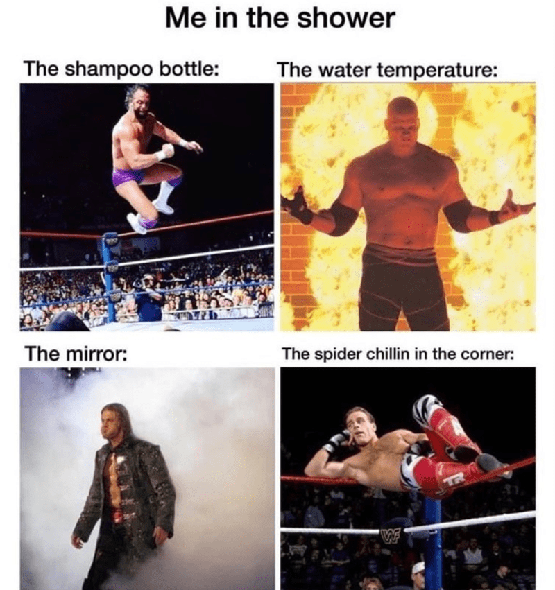Funny wrestling meme about showering | Me in the shower The shampoo bottle: The mirror: The water temperature: The spider chillin in the corner: