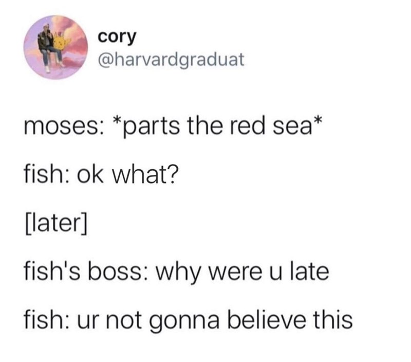 Text - cory @harvardgraduat moses: *parts the red sea* fish: ok what? [later] fish's boss: why were u late fish: ur not gonna believe this