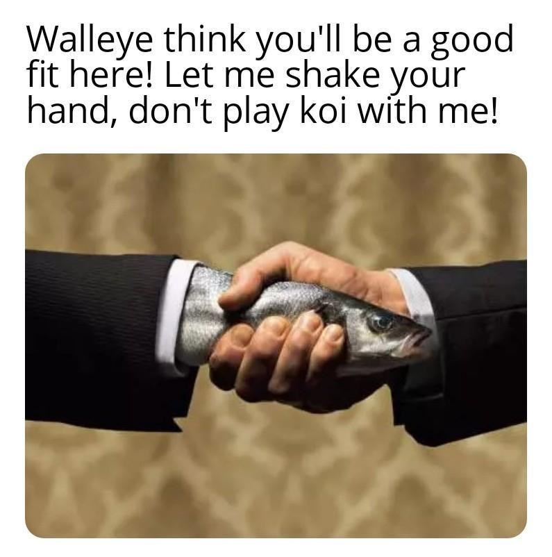 Text - Walleye think you'll be a good fit here! Let me shake your hand, don't play koi with me!
