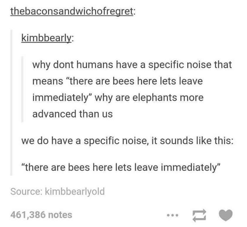"""Text - thebaconsandwichofregret: kimbbearly: why dont humans have a specific noise that means """"there are bees here lets leave immediately"""" why are elephants more advanced than us we do have a specific noise, it sounds like this: """"there are bees here lets leave immediately"""" Source: kimbbearlyold 461,386 notes"""