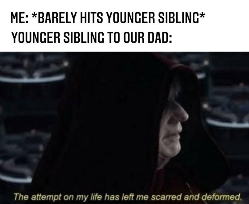 Text - ME: *BARELY HITS YOUNGER SIBLING* YOUNGER SIBLING TO OUR DAD: The attempt on my life has left me scarred and deformed.