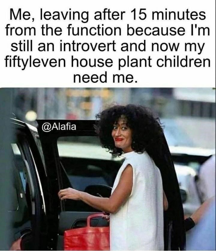 Text - Me, leaving after 15 minutes from the function because I'm still an introvert and now my fiftyleven house plant children need me. @Alafia