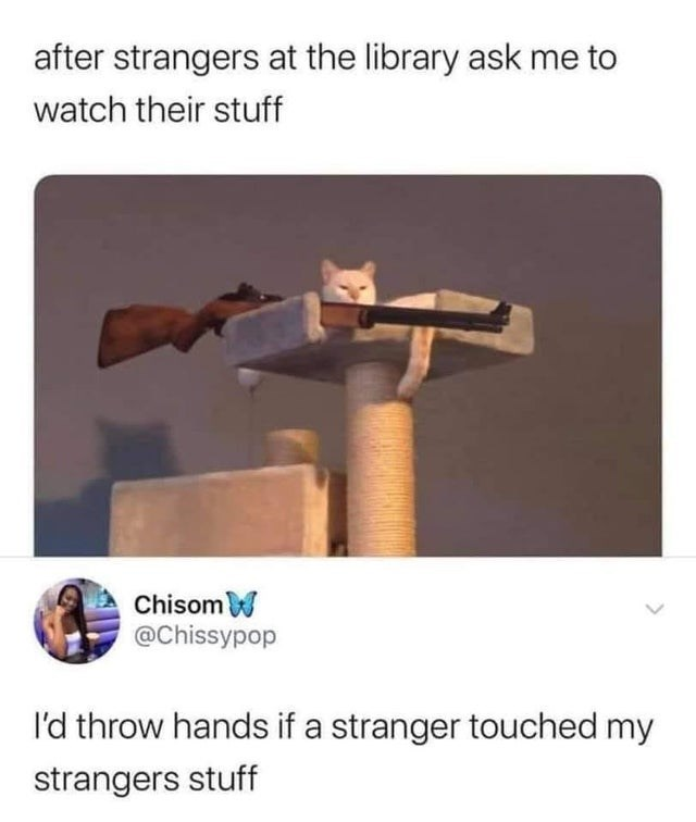 Funny tweets about defending and protecting a stranger's stuff in the library, cat with gun | after strangers at the library ask me to watch their stuff w Chisom @Chissypop I'd throw hands if a stranger touched my strangers stuff