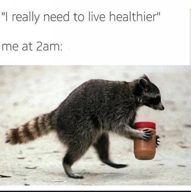 """l really need to live healthier"" me at 2am: raccoon running away with peanut butter jar"