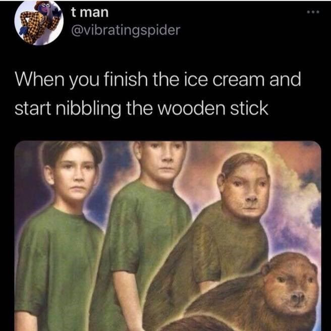 Adaptation - t man @vibratingspider When you finish the ice cream and start nibbling the wooden stick