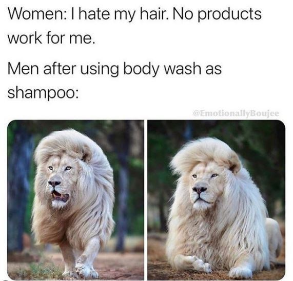 Wildlife - Women: I hate my hair. No products work for me. Men after using body wash as shampoo: @EmotionallyBoujee