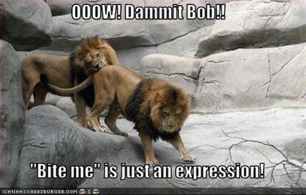 """Wildlife - 000W! Dammit Bob! """"Bite me"""" is just an expression! 1GANHASCHEEZEURGER.COM SSO"""
