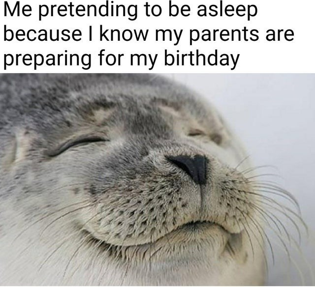 Mammal - Me pretending to be asleep because I know my parents are preparing for my birthday