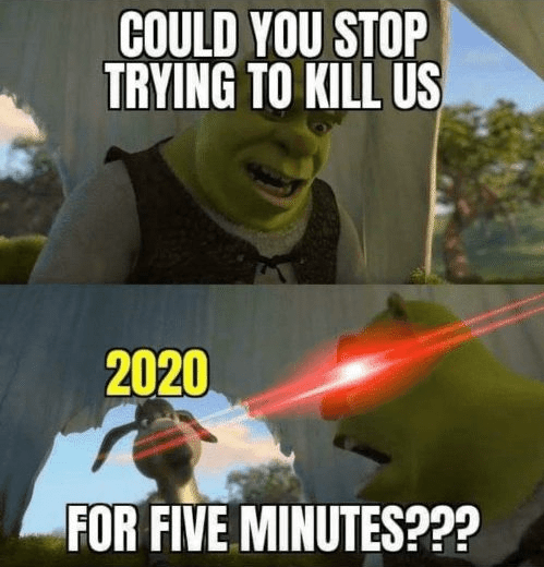 2020 funny memes 2020 memes funny - 9573454592