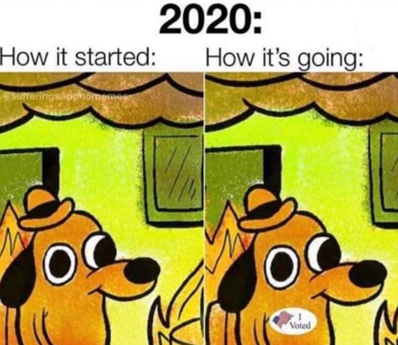 2020 funny memes 2020 memes 2020 meme of the year - 9573464832