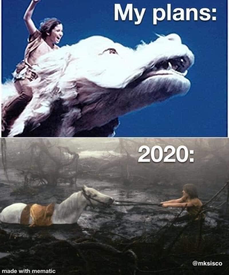 2020 2020 memes Memes funny - 9573471232