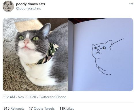 Cat - poorly drawn cats @poorlycatdraw 2:12 AM - Nov 7, 2020 - Twitter for iPhone 915 Retweets 17 Quote Tweets 11K Likes