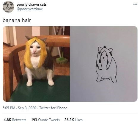 Canidae - poorly drawn cats @poorlycatdraw banana hair 5:05 PM - Sep 3, 2020 - Twitter for iPhone 4.8K Retweets 193 Quote Tweets 26.2K Likes