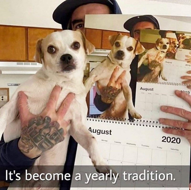 Dog - Auput 2018 August August 2020 Tundey Fedey Seday It's become a yearly tradition.