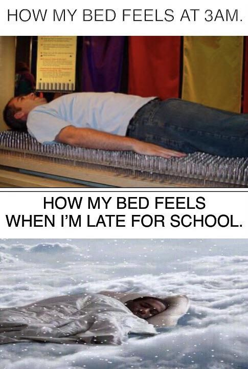 Text - HOW MY BED FEELS AT 3AM. HOW MY BED FEELS WHEN I'M LATE FOR SCHOOL.