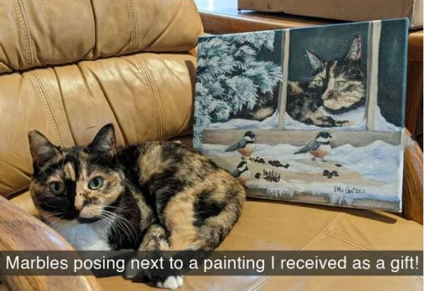 Cat - Marbles posing next to a painting I received as a gift!