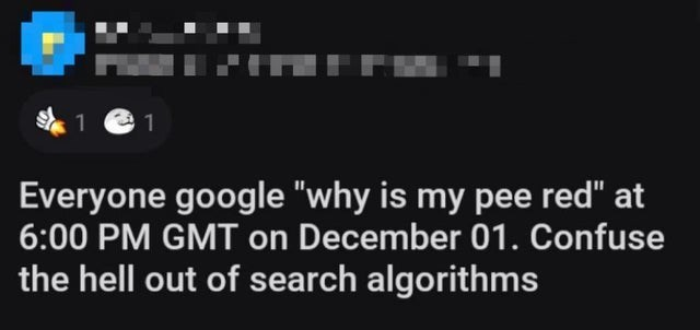"""Font - 1 Everyone google """"why is my pee red"""" at 6:00 PM GMT on December 01. Confuse the hell out of search algorithms"""