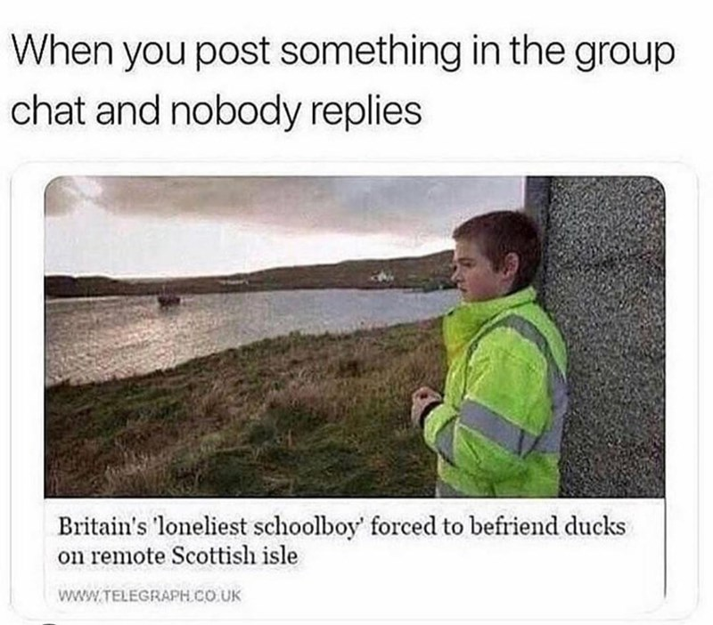 memes, funny memes, relatable memes, group chat | When you post something in the group chat and nobody replies Britain's 'loneliest schoolboy' forced to befriend ducks on remote Scottish isle TELEGRAPH.COUK