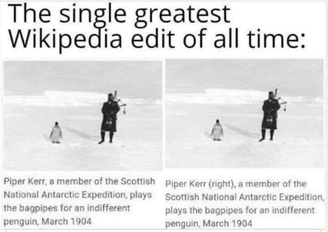 Text - The single greatest Wikipedia edit of all time: Piper Kerr, a member of the Scottish Piper Kerr (right), a member of the National Antarctic Expedition, plays Scottish National Antarctic Expedition, the bagpipes for an indifferent penguin, March 1904 plays the bagpipes for an indifferent penguin, March 1904