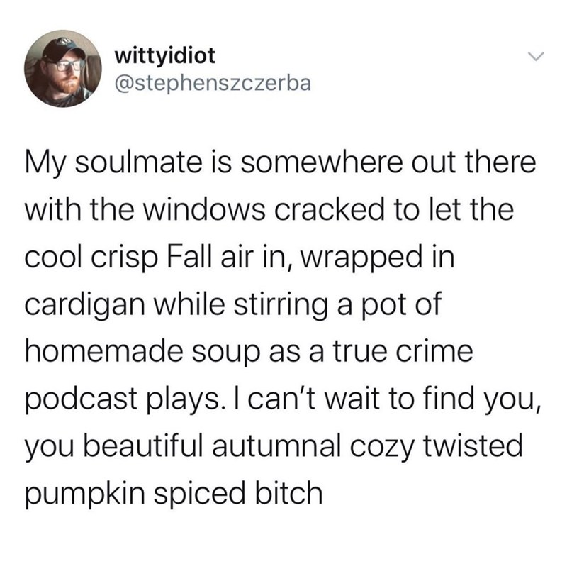 Text - wittyidiot @stephenszczerba My soulmate is somewhere out there with the windows cracked to let the cool crisp Fall air in, wrapped in cardigan while stirring a pot of homemade soup as a true crime podcast plays. I can't wait to find you, you beautiful autumnal cozy twisted pumpkin spiced bitch