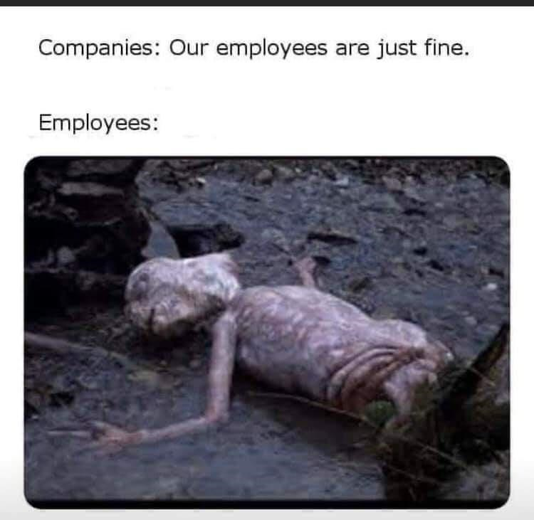 Adaptation - Companies: Our employees are just fine. Employees: