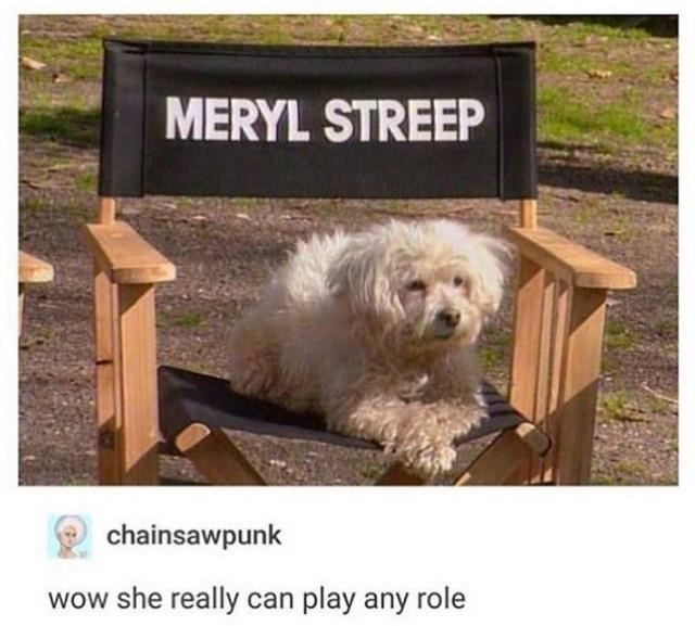 Dog - MERYL STREEP chainsawpunk wow she really can play any role